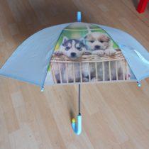 Deštník spejsky