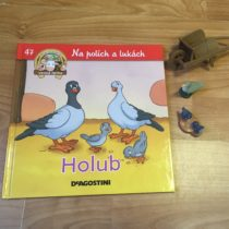 Dětská kniha ze série Hraj si a uč se – Na polích a lukách – Holub