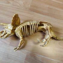 Kostra dinosaura