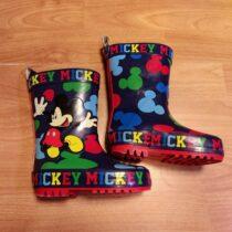 Holinky Mickey