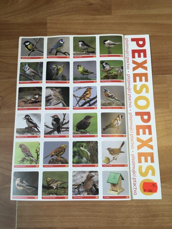 Pexeso – ptáčci