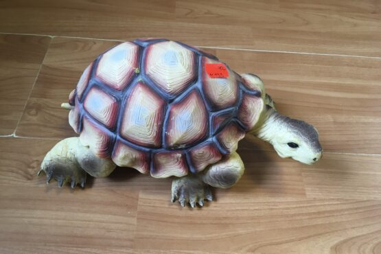 Velká gumová želva